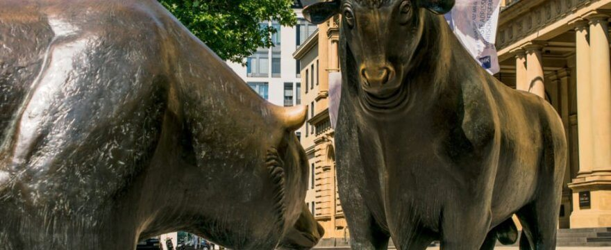 rynek byka