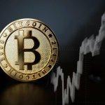 rynek crypto