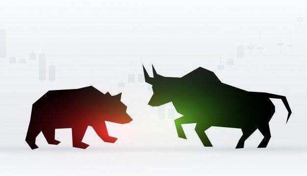 byk vs niedźwiedz