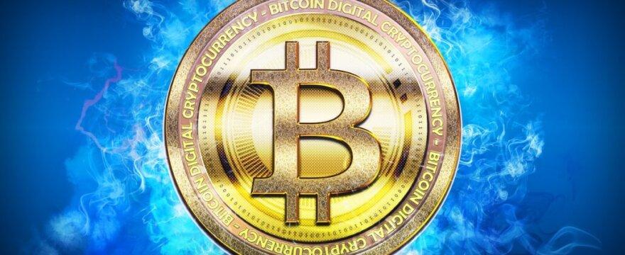 Riot Blockchain ogłasza przejęcie ponad tysiąca górników Bitmain S19